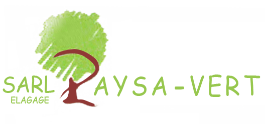 Paysa-vert